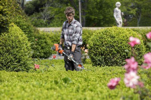 giardiniere Poggibonsi